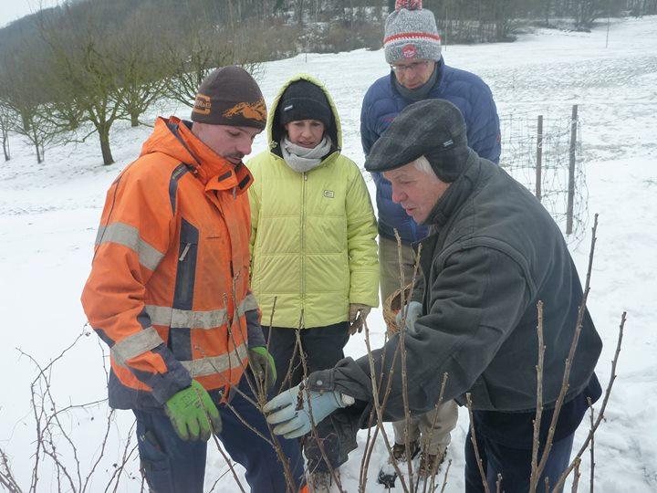 Gärtnern im Winter: Die Planung macht es aus